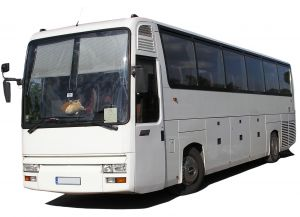 Buses To and From Hamilton